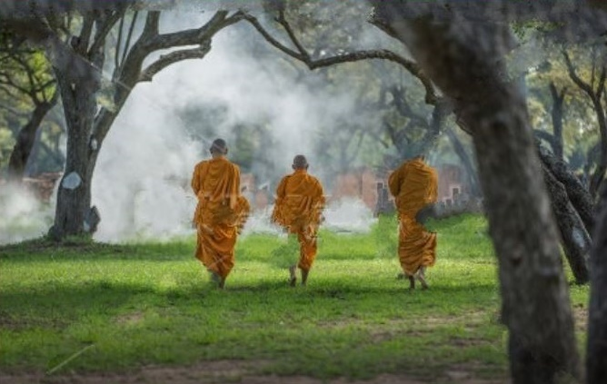 monks in park